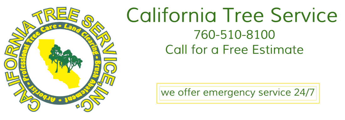 California Tree Service